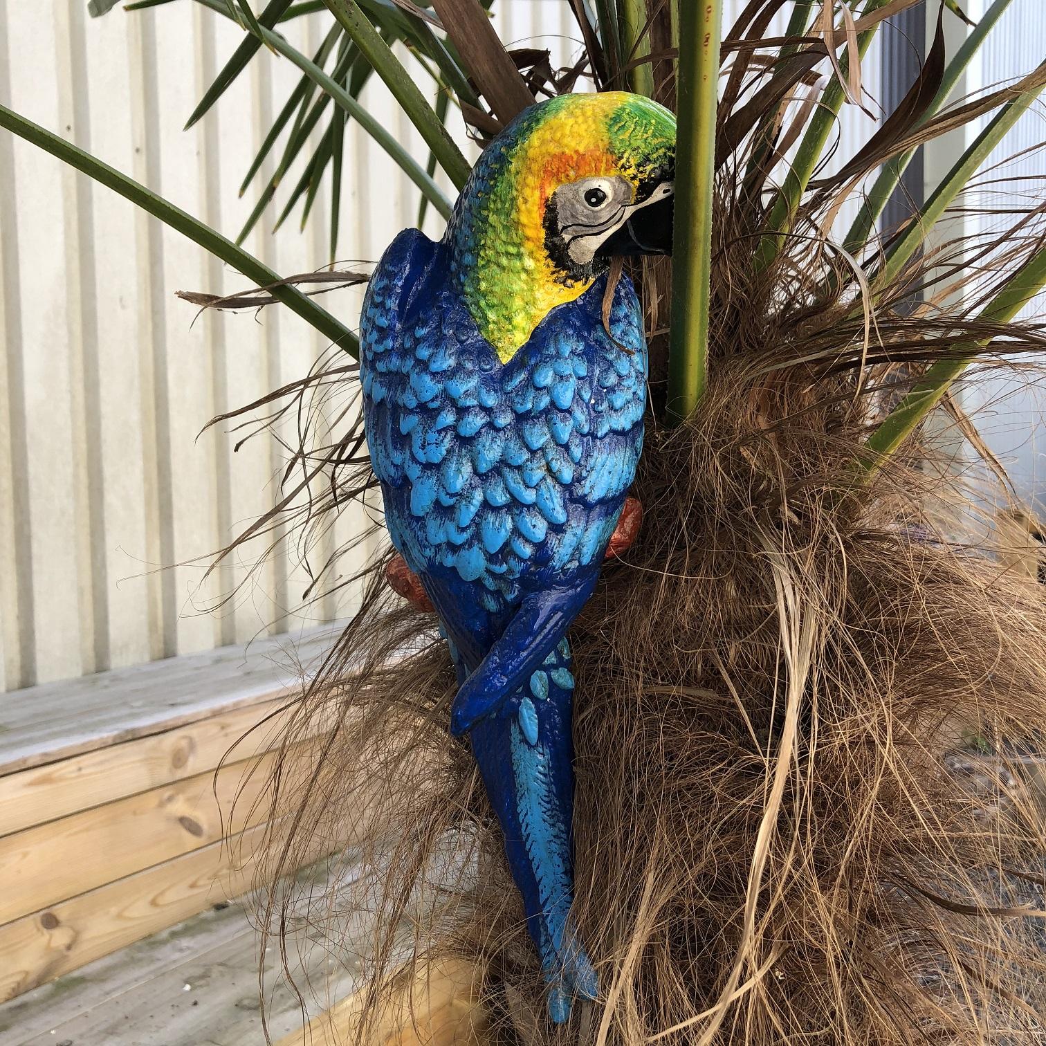 Spiksplinternieuw tags: wintertuin, papegaai, ara, blauwe papegaai, tuin, decoratie YV-52